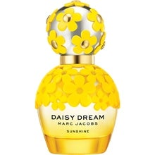 Daisy Dream Sunshine